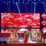 da_nang_expats_got_talent_psbe_ujhs